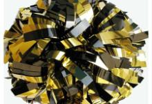 Black & Gold Pom
